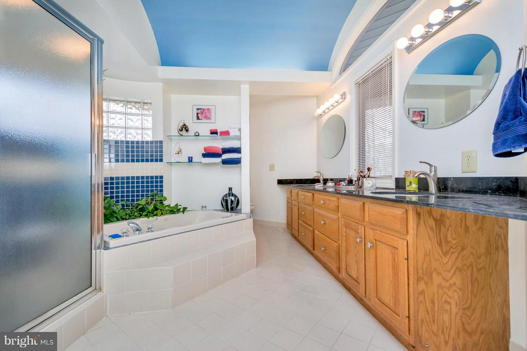 Master bath w/ jetted tub and separate shower - 542 HARRISON CIR, LOCUST GROVE