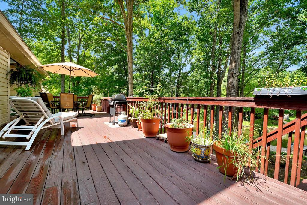 Beautiful landscaping and deck accent the outdoors - 542 HARRISON CIR, LOCUST GROVE