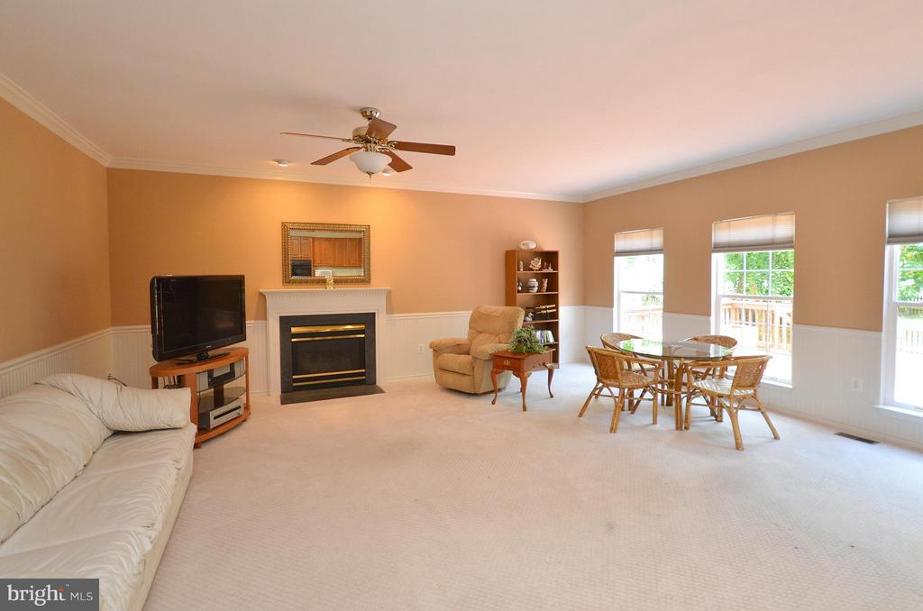 Spacious Family Room with Gas Fireplace - 20532 DEERWATCH PL, ASHBURN