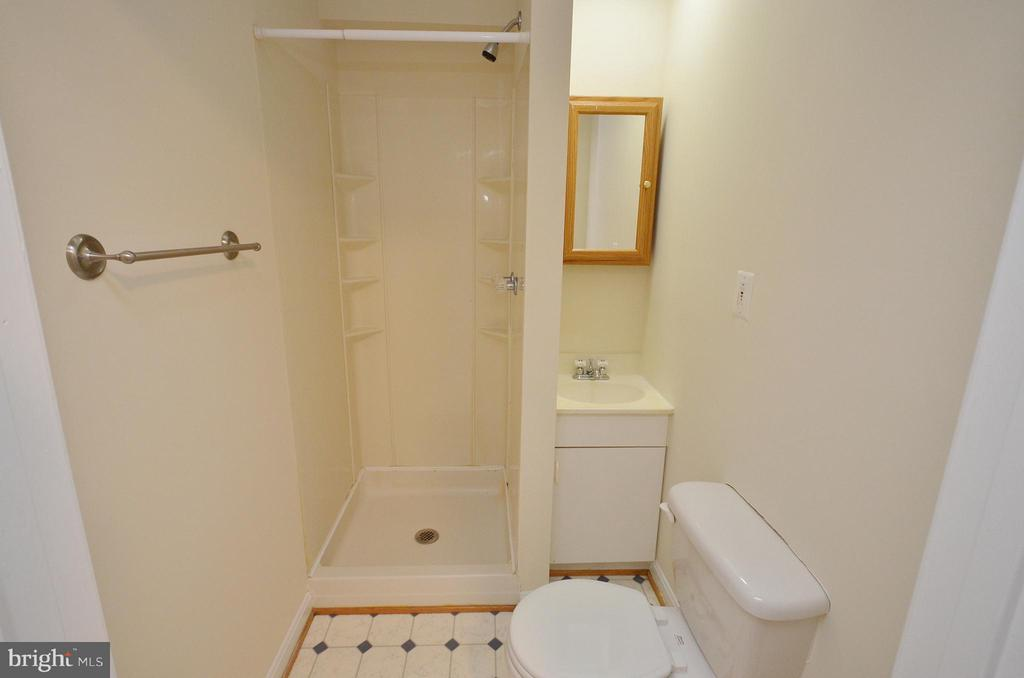 Full Bathroom in the Basement - 833 TALL OAKS SQ SE, LEESBURG