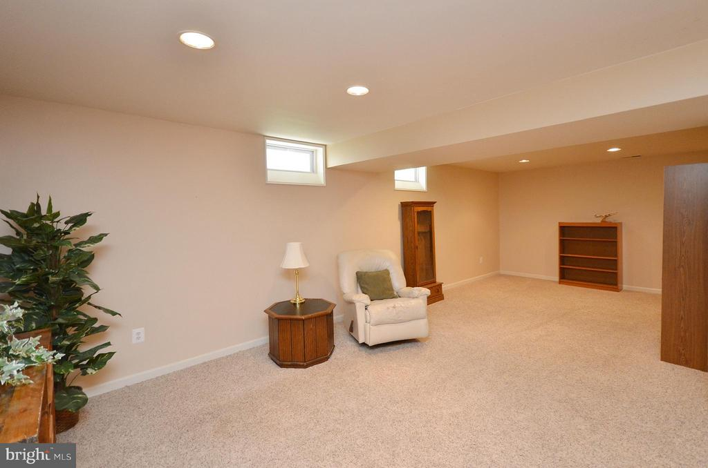 Basement - 20532 DEERWATCH PL, ASHBURN