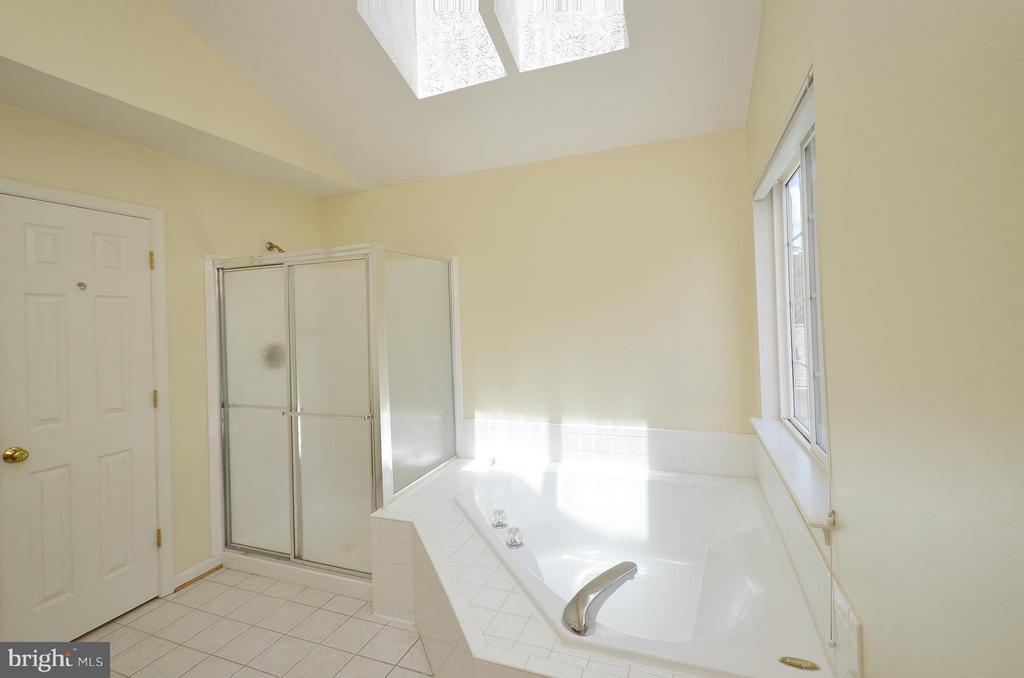 Master Bathroom with Soaking Tub and Shower - 20532 DEERWATCH PL, ASHBURN