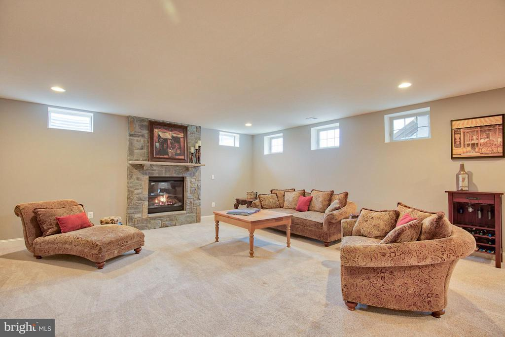Lower Level Recreation Room - 17331 WESTHAM ESTATES CT, HAMILTON