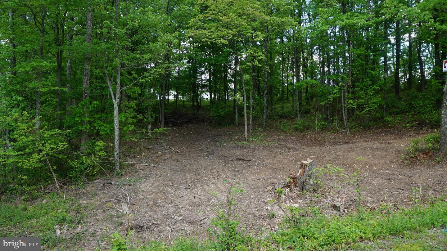 Land for Sale at Key Ln Berkeley Springs, West Virginia 25411 United States