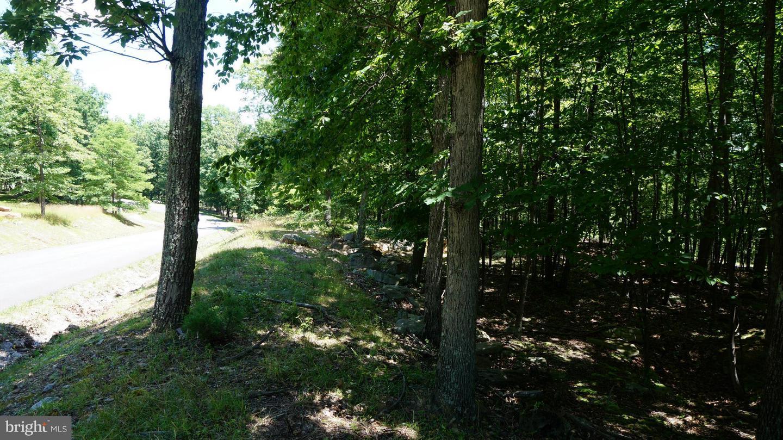 Land for Sale at Parkside Ter Berkeley Springs, West Virginia 25411 United States