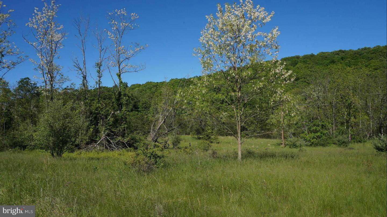 Land for Sale at Rock Gap Rd Berkeley Springs, West Virginia 25411 United States