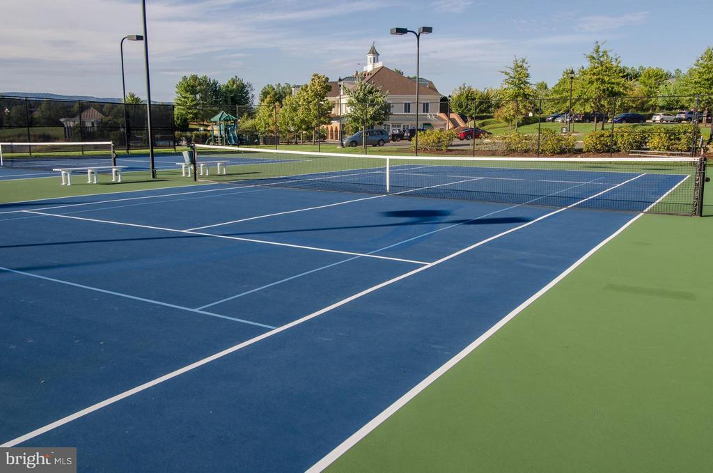 Community Tennis Courts - 4419 DODDS MILL DR, HAYMARKET