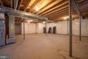 basement - 20061 BLACKWOLF RUN PL, ASHBURN