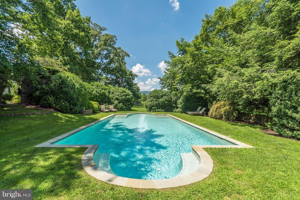 Refreshing pool with views to the Blue Ridge. - 33542 NEWSTEAD LN, UPPERVILLE
