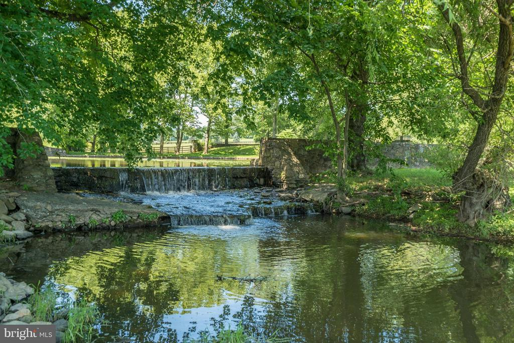Half Acre stocked pond with gorgeous waterfall - 33542 NEWSTEAD LN, UPPERVILLE