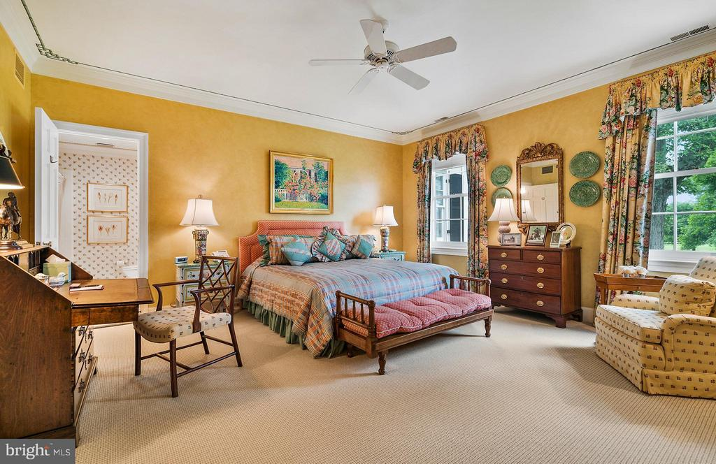 The Yellow Guest Bedroom with en suite bath - 33542 NEWSTEAD LN, UPPERVILLE