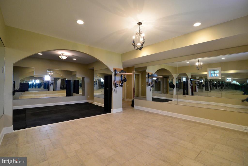 Large Fitness Room in Basement - 41738 PUTTERS GREEN CT, LEESBURG