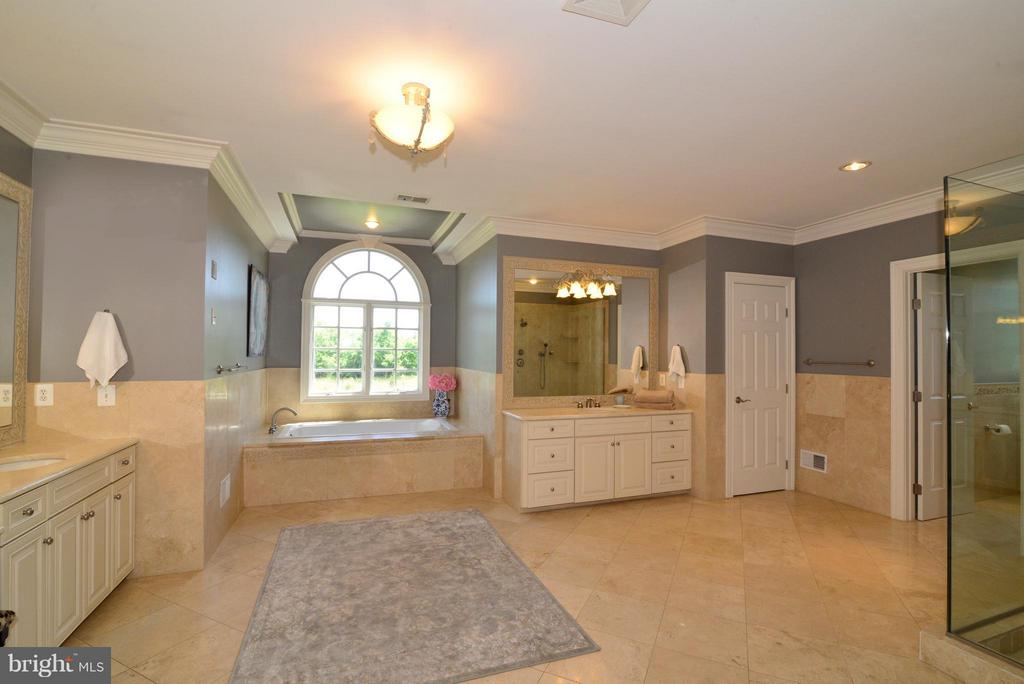 Luxury master bathroom - 41738 PUTTERS GREEN CT, LEESBURG