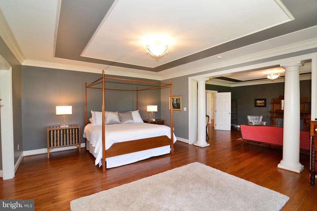 Master bedroom suite w/tray ceiling - 41738 PUTTERS GREEN CT, LEESBURG