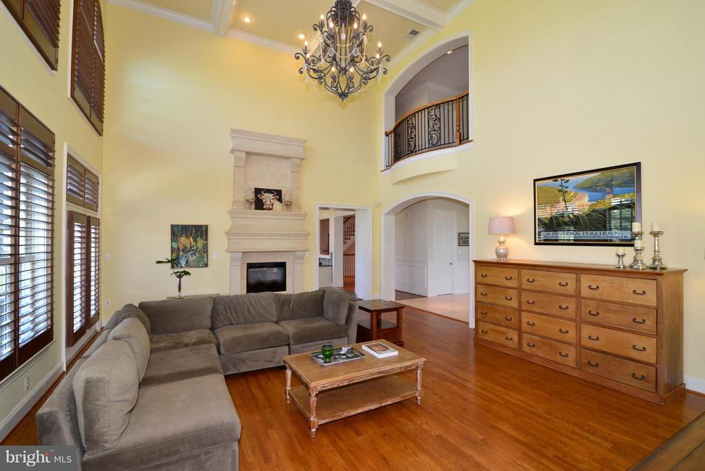 2 story family room w/fireplace - 41738 PUTTERS GREEN CT, LEESBURG