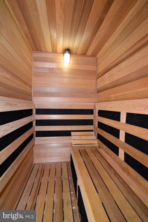 Sauna in Basement - 41738 PUTTERS GREEN CT, LEESBURG
