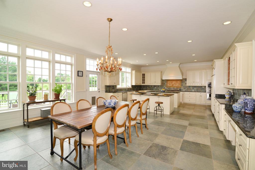 Tile floors + amazing windows - 41738 PUTTERS GREEN CT, LEESBURG