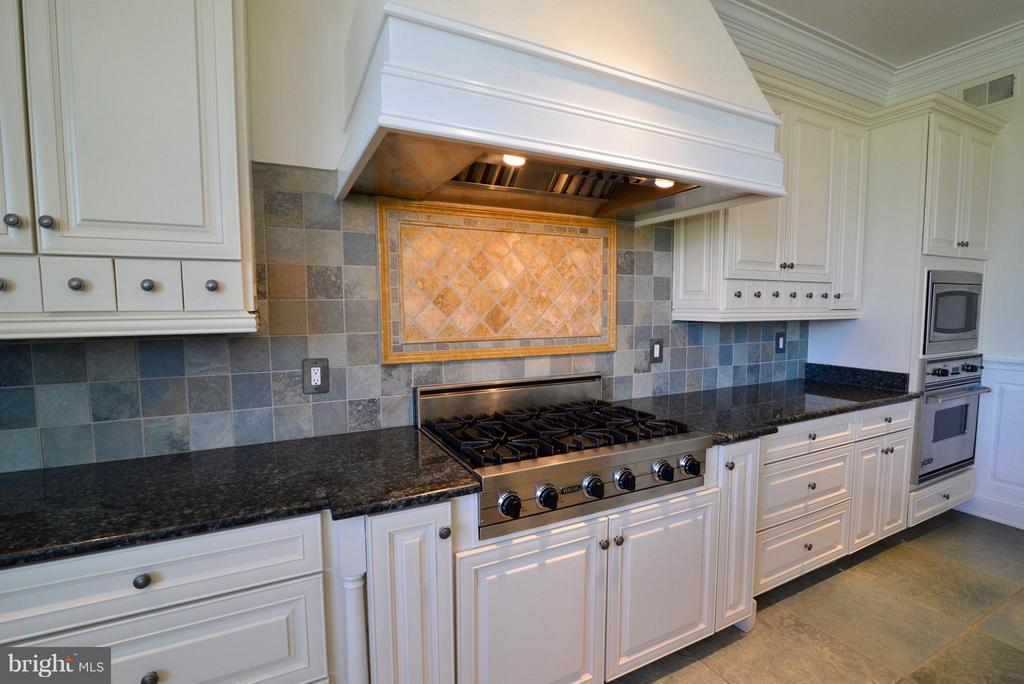 Viking range, hood and appliances - 41738 PUTTERS GREEN CT, LEESBURG