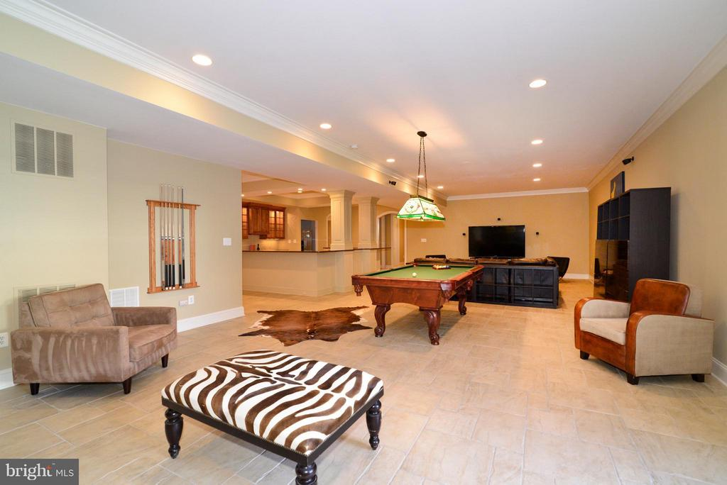 Basement - Large & Open - 41738 PUTTERS GREEN CT, LEESBURG