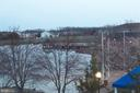 View from Bedroom Balcony in early Spring! - 20576 SNOWSHOE SQ #302, ASHBURN