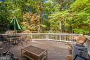 Wooded Views from Deck - 12647 BELLEFLOWER LN, FREDERICKSBURG