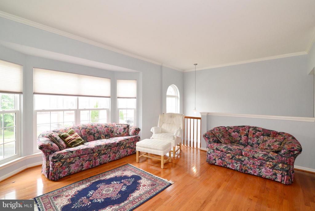 Living Room - 42735 MONTEVISTA SQ, LEESBURG