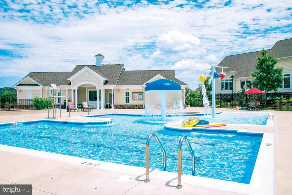 Community Pool & Kids Pool - 23553 HOPEWELL MANOR TER, ASHBURN