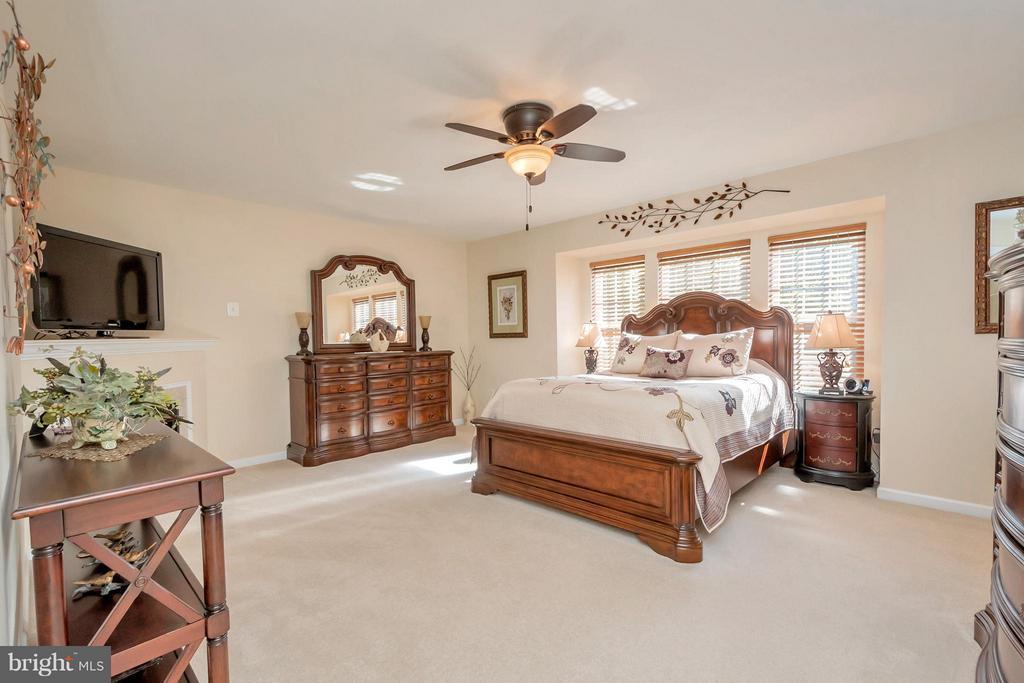 Spacious master will accommodate large furnishings - 316 LIBERTY BLVD, LOCUST GROVE