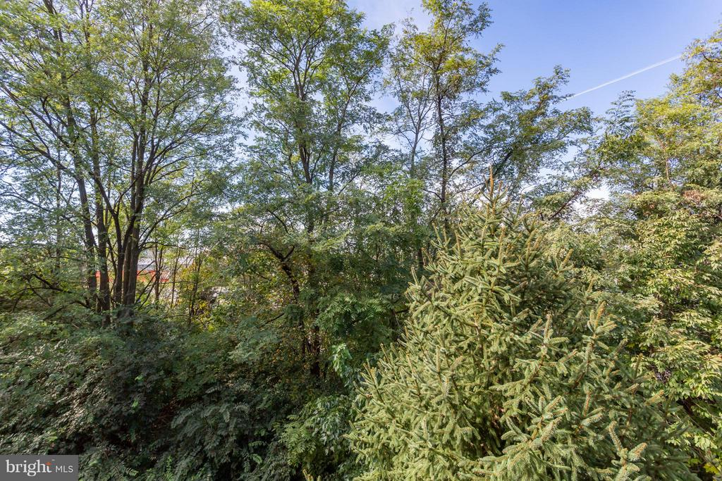 Peace and privacy from your deck - 11314 WESTBROOK MILL LN #303, FAIRFAX