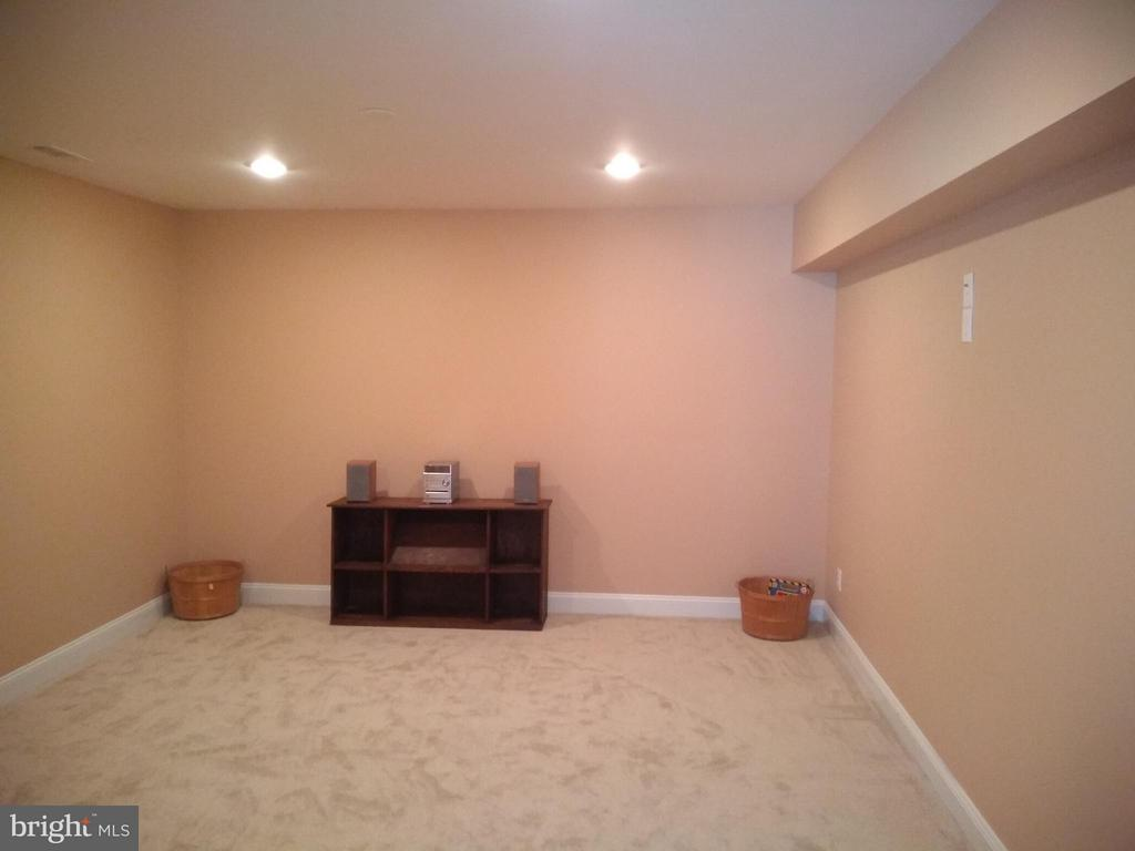 16x14 Media Room in 2018 Finished Basement - 43341 CEDAR POND PL, CHANTILLY