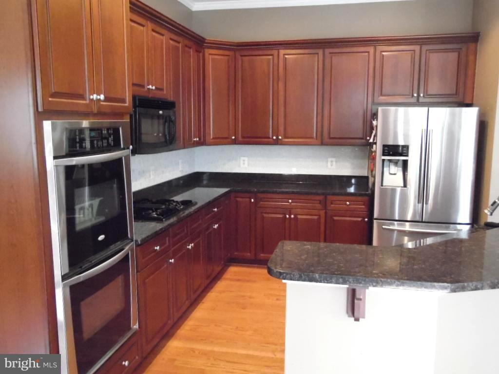 Main Level Gourmet Kitchen - 43341 CEDAR POND PL, CHANTILLY
