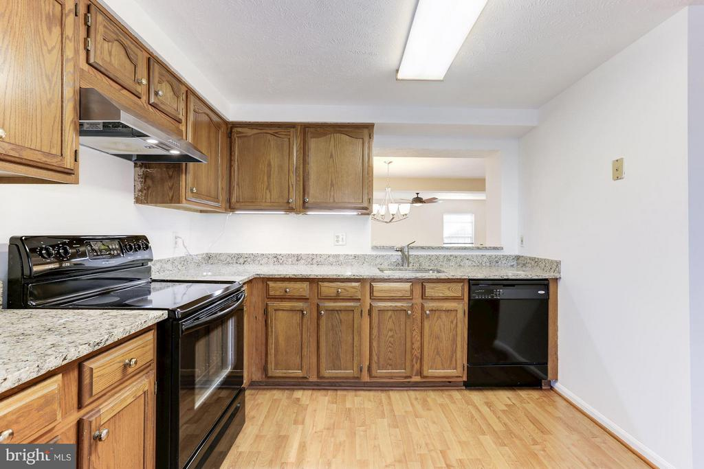 New granite counter tops. - 43979 CHOPTANK TER, ASHBURN