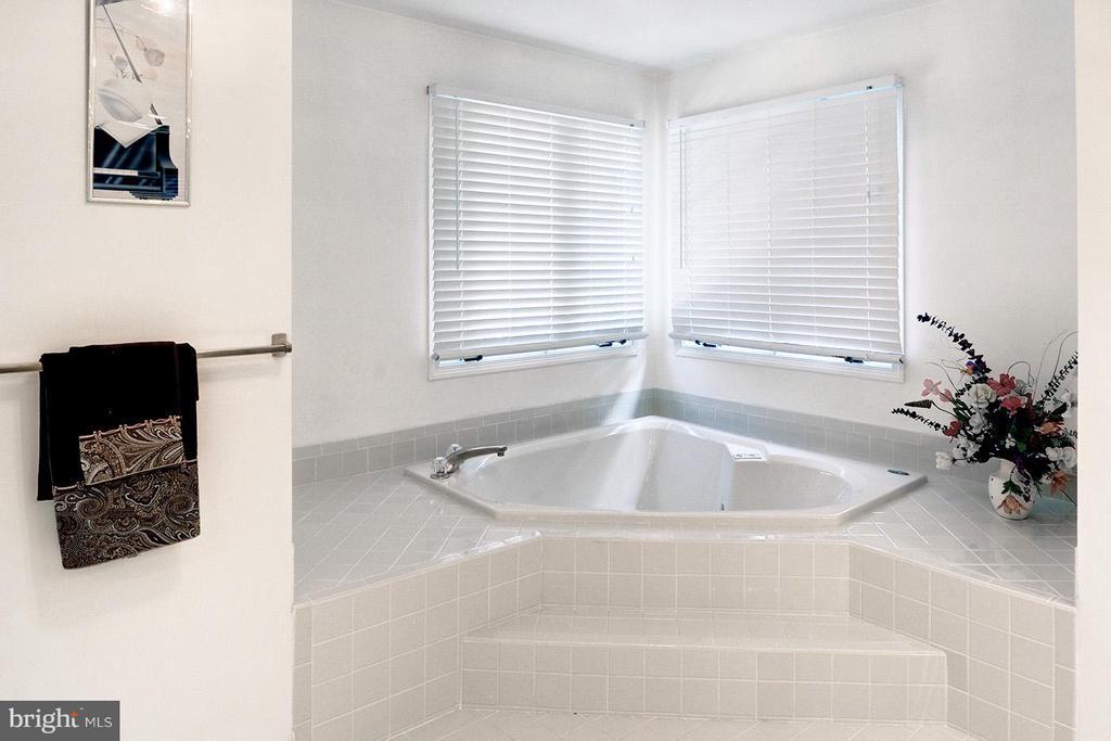 Bath (Master) - 9009 COPPERLEAF LN, FAIRFAX STATION