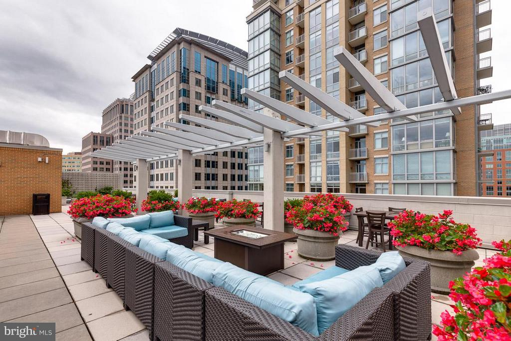 Rooftop Lounge with a Grill - 12025 NEW DOMINION PKWY #222, RESTON