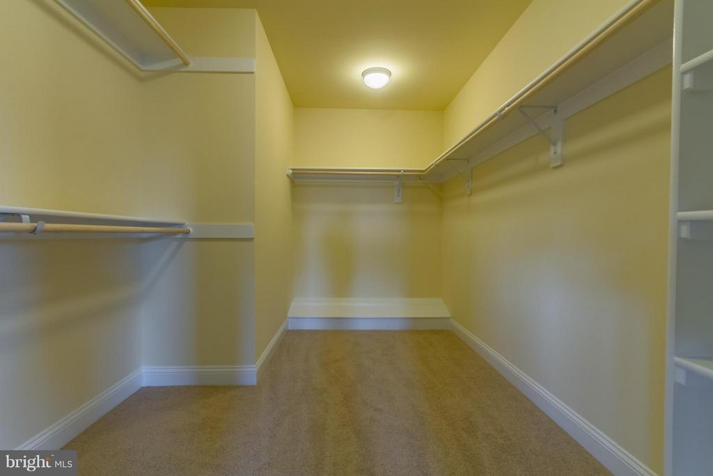 Large Walk in Master Closet - 208 SAINT ANDREWS CT, WINCHESTER