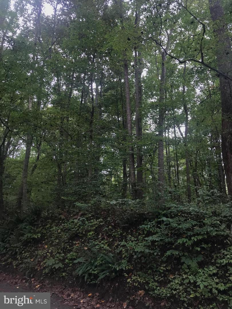 Land for Sale at Mount Wolf Road Charlotte Hall, Maryland 20622 United States