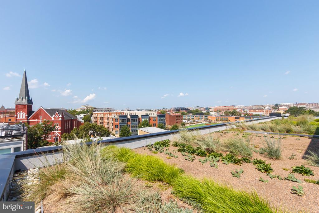 Rooftop View - 1628 11TH ST NW #109, WASHINGTON