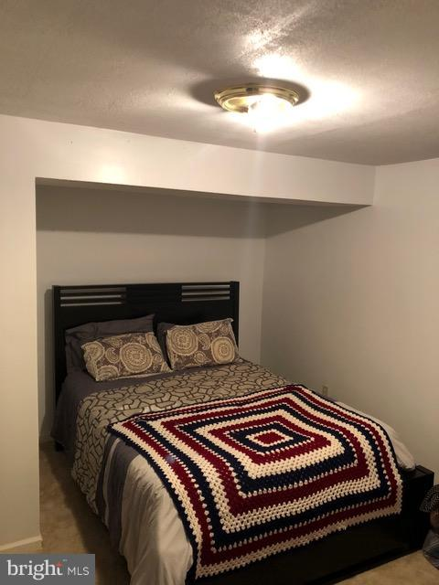 Bedroom Lower/Level - 10311 COLD HARBOR DR, HAGERSTOWN