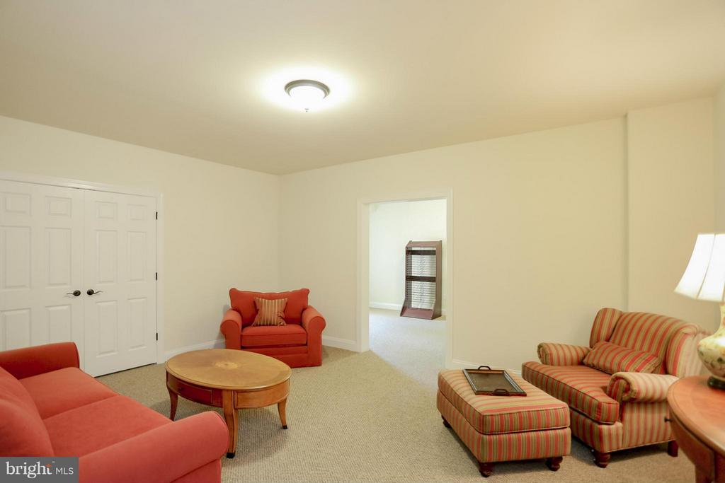 Extra Room in the Basement - 109 CAMP GEARY LN, STAFFORD