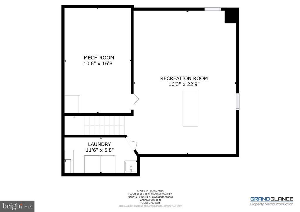 Basement Floor Plan - 151 MORNING GLORY DR, WINCHESTER