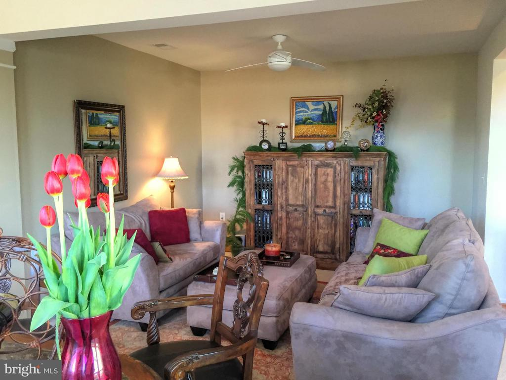 Living Room - 20974 ALBION LN, ASHBURN