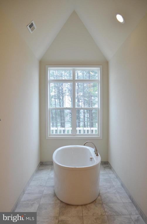 Bath (Master) - 9470 LAKE HILL FARMS DR #2-1, LORTON