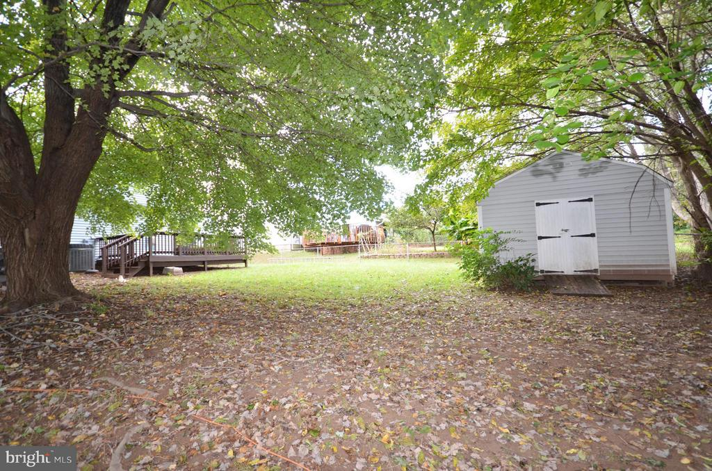 Backyard - 1309 BEECH RD, STERLING