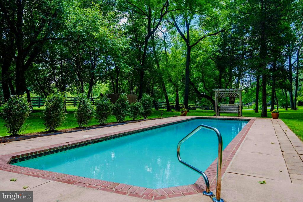 Fabulous 50' Blue Haven Lap Pool - 39434 SNICKERSVILLE TPKE, MIDDLEBURG