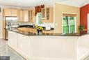 Relax or entertain in this kitchen made for a chef - 42308 GREEN MEADOW LN, LEESBURG
