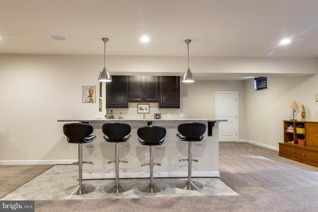 Beautiful Wet Bar in the Rec Room - 44760 MALDEN PL, ASHBURN