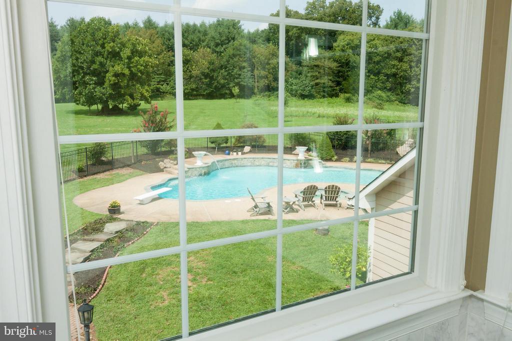 View from luxury bath  - pool, trees - 42308 GREEN MEADOW LN, LEESBURG