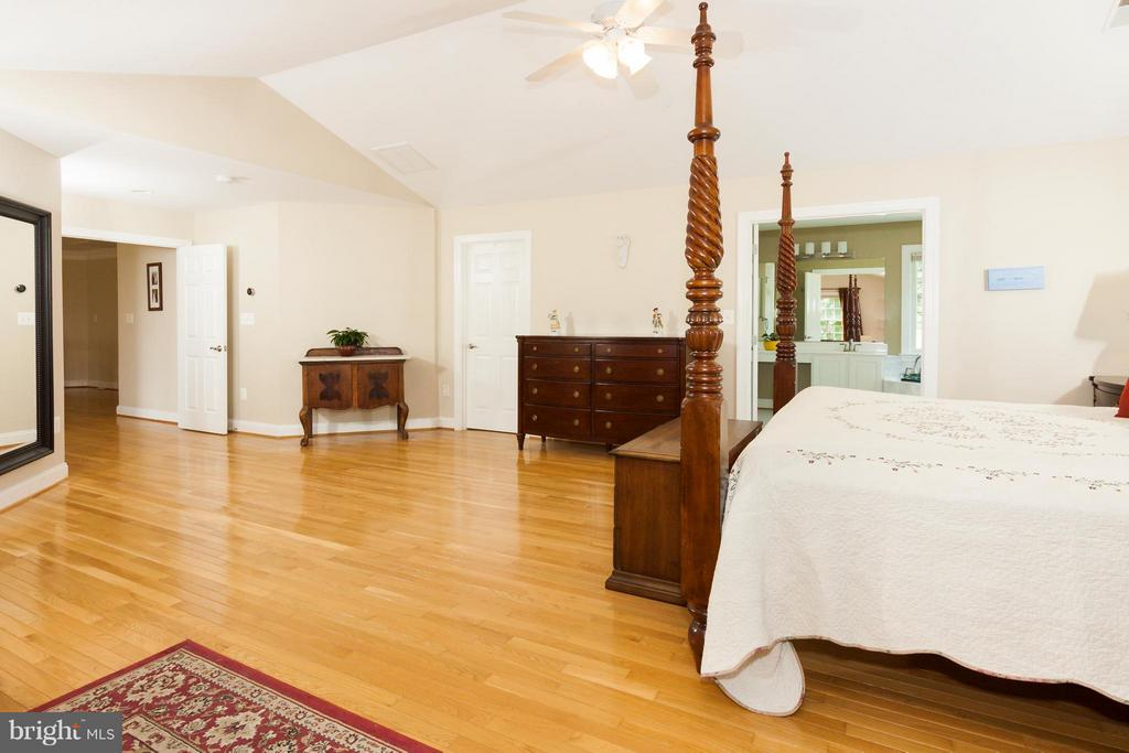 Another view of Owner's Suite,and luxury bath - 42308 GREEN MEADOW LN, LEESBURG