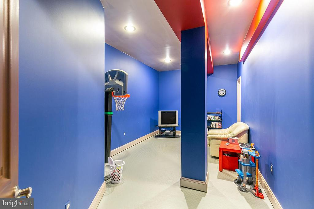Kids Playroom - 43239 PARKERS RIDGE DR, LEESBURG
