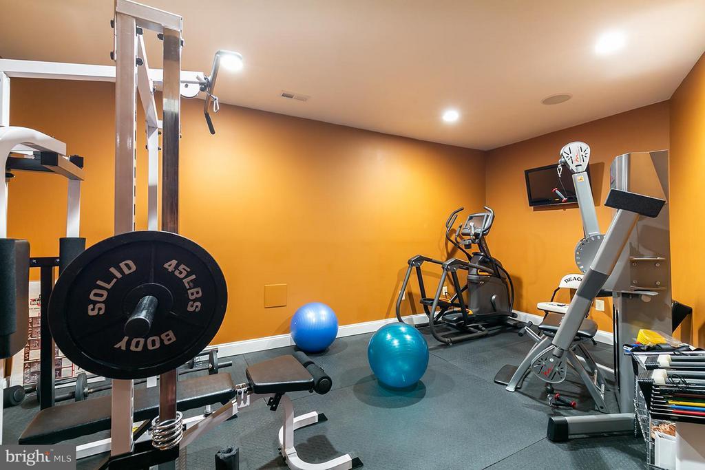 Home Gym - 43239 PARKERS RIDGE DR, LEESBURG